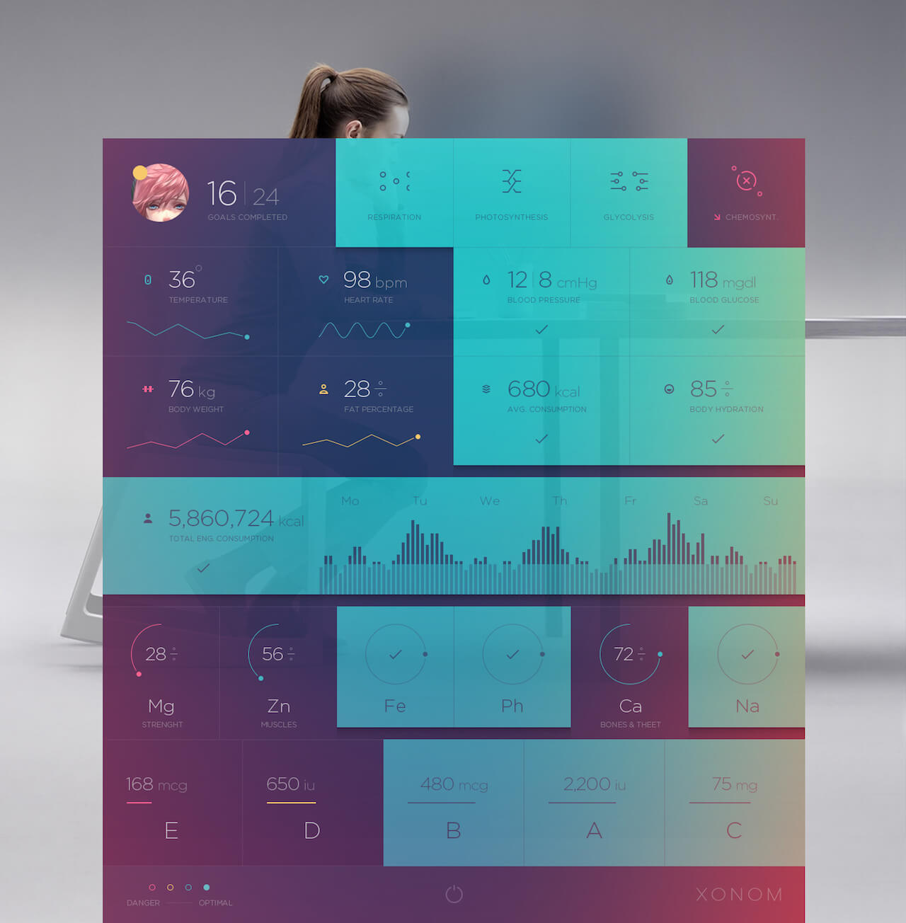 Xonom Dashboard